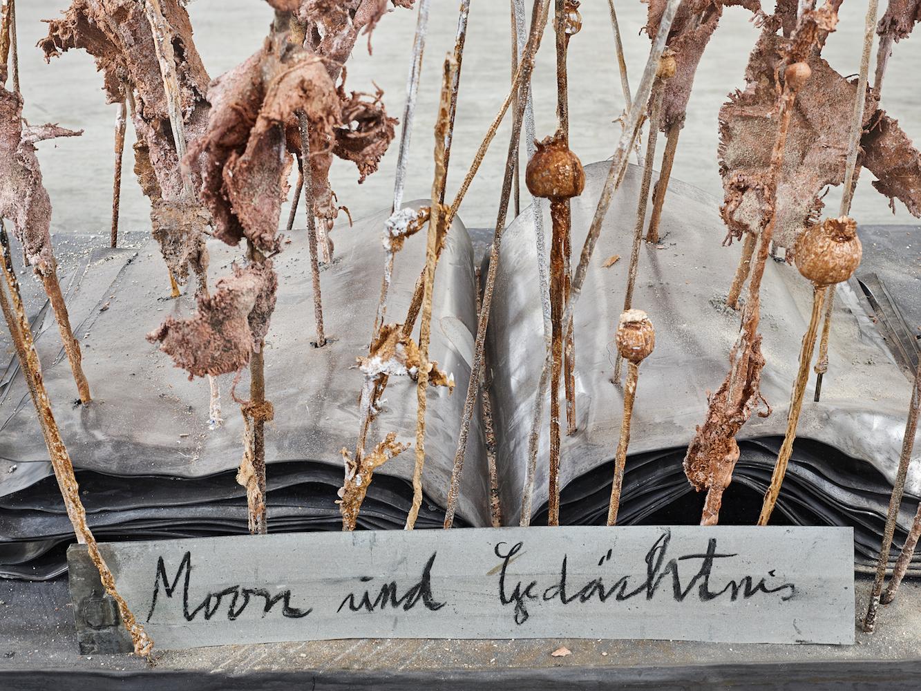 Anselm Kiefer, Opus Magnum – Mohn und Gedächtnis, 2014, Kiefer-Sammlung Grothe im Franz Marc Museum © Anselm Kiefer, Foto: collecto.art
